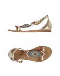 Coral Blue Sandals Gold
