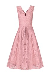 Jolie Moi Scalloped Lace Prom Dress Pink