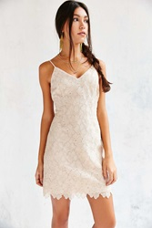 Cooperative Metallic Daisy Lace Party Dress Pink