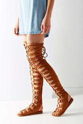 Jeffrey Campbell Olympus Over The Knee Gladiator Sandal Tan