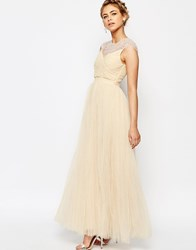 Little Mistress Tulle Maxi Dress With Diamante Trim Nude Pink