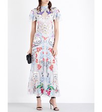 Temperley London Long Sail Embroidered Tulle Gown Light Grey