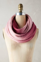Anthropologie Ombre Infinity Scarf Pink