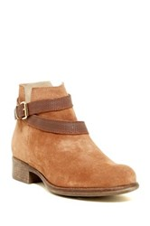 Manas Design Crisscross Buckle Strap Suede Bootie Brown