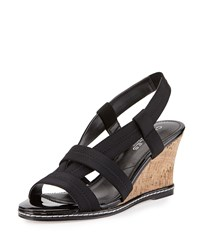 Charles By Charles David Hyper Elastic Wedge Sandal Black