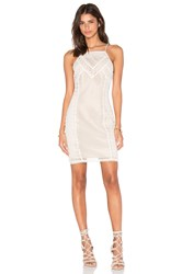 Greylin Lua Lace Halter Dress Cream
