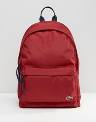 Lacoste Backpack In Red Red