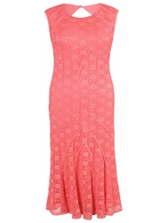 Chesca Daisy Stretch Lace Cathedral Detail Dress Coral Red