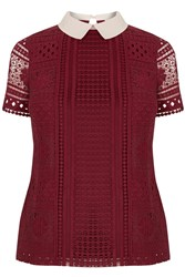 Oasis Lace Collared Tee Red