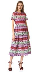 Alexis Daniella Dress Burgundy Multicolor