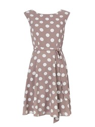 Wallis Spot Print Fit And Flare Dress Stone