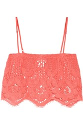 Miguelina Chandler Cropped Crocheted Cotton Top Orange