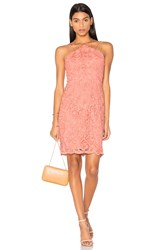 Lumier Dancing On My Own Mini Dress Coral