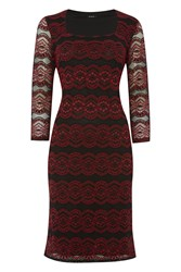 Roman Originals Lace Overlay Contrast Dress Red