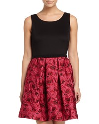 Taylor Sleeveless A Line Jacquard Dress Black Rose