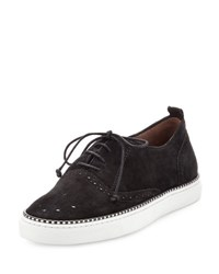 Tabitha Simmons Tate Suede Brogue Low Top Sneaker Black