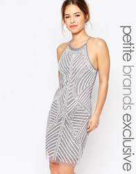 True Decadence Petite Allover Embellished Cami Shift Dress Soft Gray