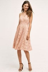 Champagne And Strawberry Astrid Dress Pink