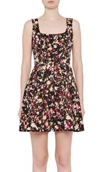French Connection Women's Midnight Bloom Fit And Flare Dress