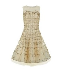 Oscar De La Renta Embroidered Tulle Prom Dress Gold