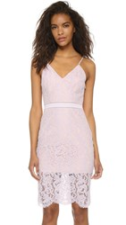 Style Stalker Sunset Midi Lace Dress Orchid
