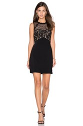Greylin Cynthia Lace Dress Black