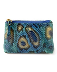 Graphic Image Blue Python Print Jewelry Pouch