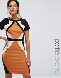 Paper Dolls Petite Colour Block Panel Pencil Dress Multi