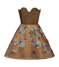 Delpozo Floral Embroidered Bustier Dress Female Brown