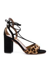 Aquazzura Suede Austin Sandals In Animal Print Black Animal Print Black