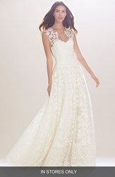 Women's Carolina Herrera 'Madeline' Embroidered Illusion A Line Gown In Stores Only