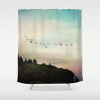 Flight Pattern Shower Curtain By Sylvia Cook Photography Society6