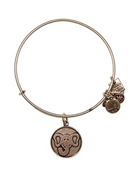 Alex And Ani Elephant Expandable Wire Bangle Charity By Design Collection Rafaelian Silver