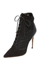 Schutz Jolana Lace Up Booties Black