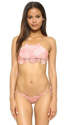 Blue Life Desert Mirage Crop Bikini Top Blush Tie Dye