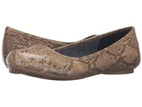 Dr. Scholl's Friendly Stucco Oppel Snake Women's Flat Shoes Tan