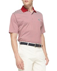 Peter Millar Stanford Striped Gameday College Polo Shirt Red White