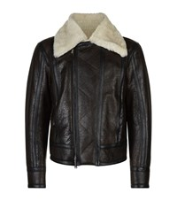 Dsquared2 Shearling Lined Leather Flight Jacket Male Brown