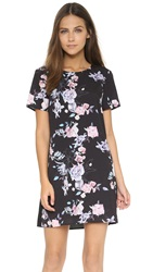 Style Stalker Winter Garden Shift Dress