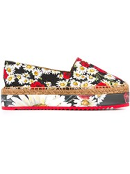 Dolce And Gabbana Daisy And Poppy Print Espadrilles