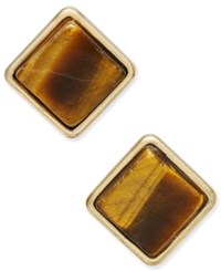 Macy's Gold Tone Brown Stone Square Stud Earrings