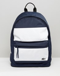 Lacoste Backpack In Colour Block Navy