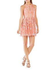 Bcbgmaxazria Sleeveless Geometric Lace Fit And Flare Dress Coral
