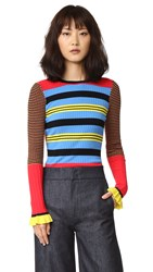 Opening Ceremony Striped Long Sleeve Crew Neck Top Azure Multi