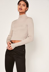 Missguided Basic Roll Neck Long Sleeve Crop Jumper Nude Stone