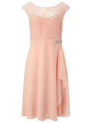 Jacques Vert Lace Overlay Dress Soft Pink