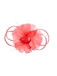 Accessorize Athena Feather And Flower Fascinator Clip