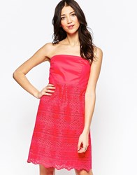 Lavand Bandeau Dress With Lace Skirt Pink
