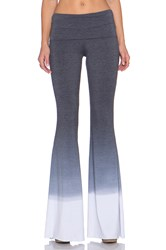 Saint Grace Ashby Flare Pant Gray