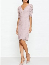 Reiss Dahlia Fitted Lace 3 4 Length Sleeve Dress Cloud